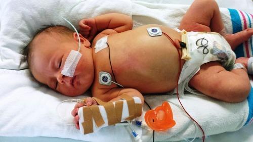 newborn-617414_1280