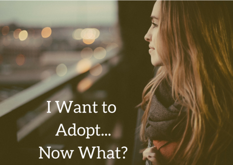 i-want-to-adopt-now-what-graphic