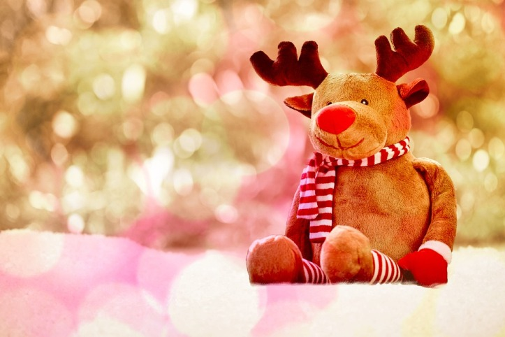 Holiday Cover Photo